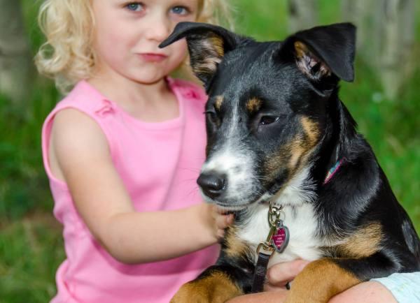 Underwood Pup