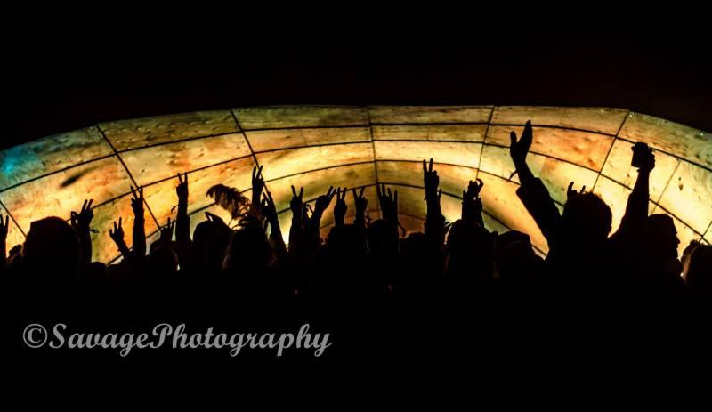 Firefly Gathering